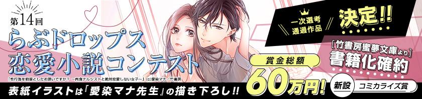 第14回らぶドロップス 恋愛小説コンテスト